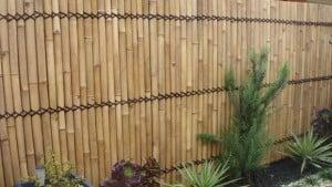Bamboe omheining