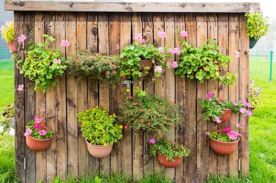Tuinafsluitingen met bloemen