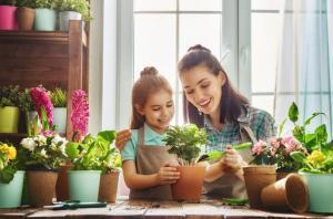 Wanneer kun je het best planten?